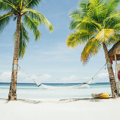 palm trees on the beach with a hammock tied between them