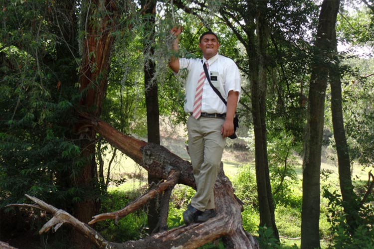 missionary standing on a tree in a wooded area